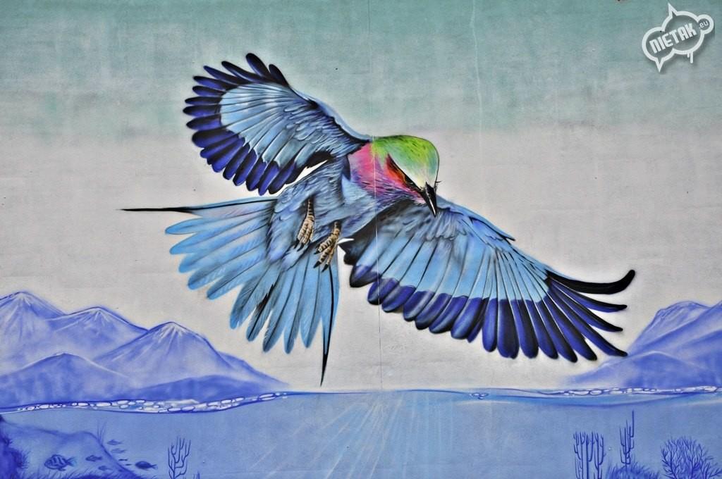 KRASKA,Ptak graffiti, nietak.eu, zawadzkie