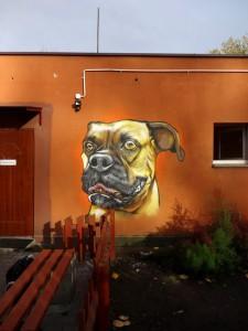 pies, buldog, graffiti