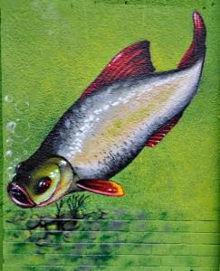 ryba, mural graffiti, malowanie zewnętrzne